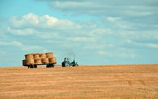 farming hay
